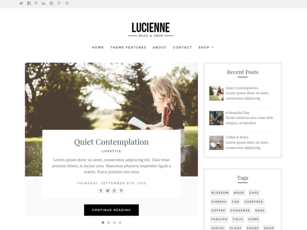 Lucienne Best Free WordPress Themes for bloggers