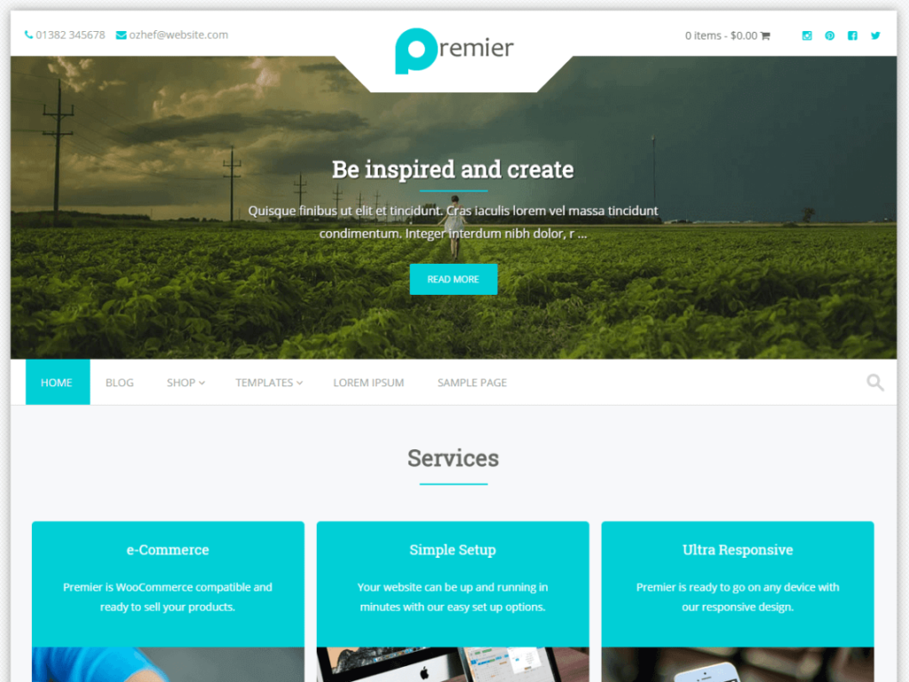 Premier WordPress theme